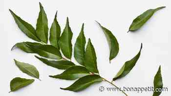 Curry Leaves Are a South Indian Herb With Major Star Power