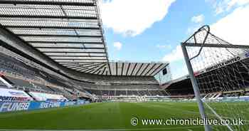 Safe standing atmosphere claim as Newcastle United given St James' Park option