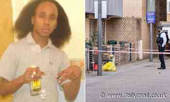 Four men are arrested at Heathrow Airport over murder of man, 27, who was shot dead in Brixton