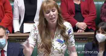 'Grim-faced Dominic Raab is no match for fearsome Angela Rayner at PMQs'