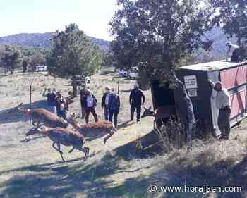 Los recursos naturales y paisajísticos de Santa Elena como destino rural de primer nivel en Jaén | Hora Jaén - HoraJaén