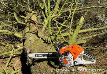 Stihl chainsaws among items stolen in burglary near Hereford