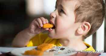 Your child could be the next mini Birds Eye Captain and be featured on Fish Finger packs