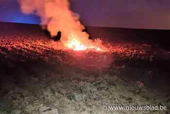 Brand op veld laait weer op (Brakel) - Het Nieuwsblad