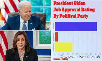 Biden approval hits new low of 37% among independent voters while Kamala is on 46% amid border chaos