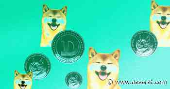 Nano Dogecoin: Is it a Doge knockoff? Why did it spike 9,000%? - Deseret News
