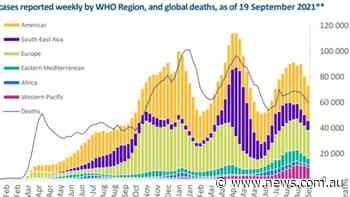 Australia Covid-19 battle: WHO says coronavirus cases and deaths are decreasing | news.com.au — Australia's leading news site - NEWS.com.au