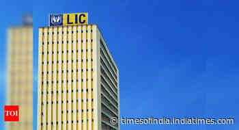 'India likely to block Chinese investment in LIC IPO'