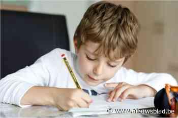 Extra vrijwilligers gezocht voor huiswerkbegeleiding