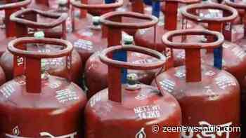 LPG Subsidy: Centre to plan new scheme for cooking gas cylinders? Here's how consumers can benefit