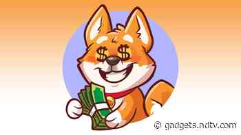 Dogecoin Knock-Off Nano Dogecoin Gains 5,000 Percent in 24 Hours