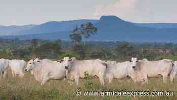 BSE case now also confirmed in UK - Armidale Express