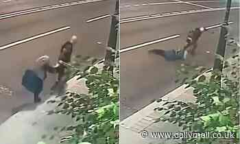 Pensioner, 70, fights off mugger trying to snatch her handbag on a Moscow street