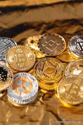 CEO von Nexo: Wenn die Regulierungsbehörden kommen, haben wir einen Plan - CryptoMonday | Bitcoin & Blockchain News | Community & Meetups