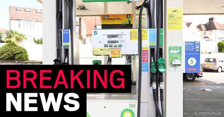 BP 'to ration fuel deliveries to petrol stations because of HGV driver shortage'