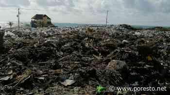 Servicios públicos reconoce 'colapso' en recolección de basura en Isla Mujeres - PorEsto