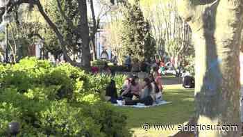 Día de la Primavera en Monte Grande con gran cantidad de gente en parques y plazas - El Diario Sur