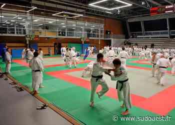 Lescar : le prof de judo incriminé pour détournement de fonds conteste - Sud Ouest