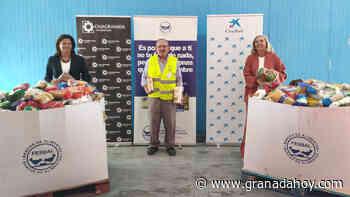 El Banco de Alimentos de Granada entrega más de 7.500 kilos de comida para los más necesitados - Granada Hoy