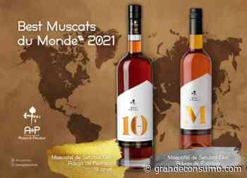 Adega de Palmela distinguida no concurso Muscats du Monde - Grande Consumo