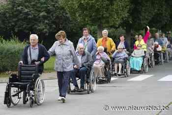In colonne naar kinderboerderij: rusthuis organiseert reeks ... (Torhout) - Het Nieuwsblad