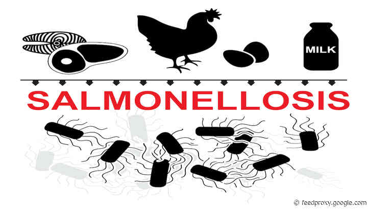 Salmonella reports in UK animals increase in 2020