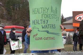 Wildsight hosts webinar highlighting logging's impact on climate change risk
