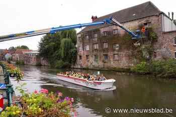Snoeien op hoog niveau aan Gentse Sint-Antoniuskaai - Het Nieuwsblad