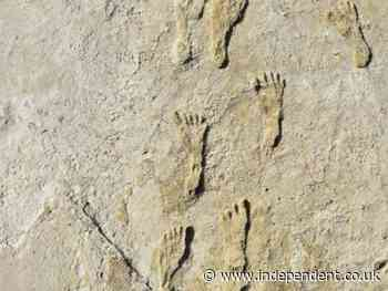 Fossil footprints show humans in North America 11,000 years earlier than previously thought