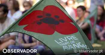 Livre quer maior participação dos cidadãos no Porto - Observador