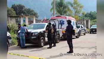 A golpes y machetazos, agricultor es asesinado en Veracruz; sus hermanas fueron a reconocerlo - TRIBUNA