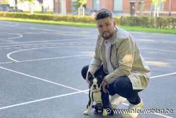 """Timothy zoekt vrijwilligers om grijs basketveldje kleur te geven: """"Mijn hond Ensor zal ook een pootje helpen"""" - Het Nieuwsblad"""