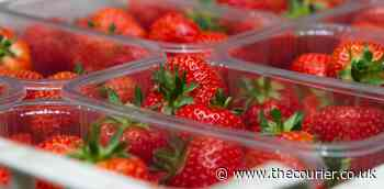 Scotland's soft fruit sector 'should be compensated' by Westminster - The Courier