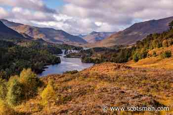 Rewilding can help Scotland fight climate change and boost the economy – Steve Micklewright - The Scotsman