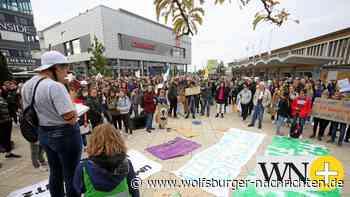 Fridays for Future demonstriert am Freitag in Wolfsburg - Wolfsburger Nachrichten
