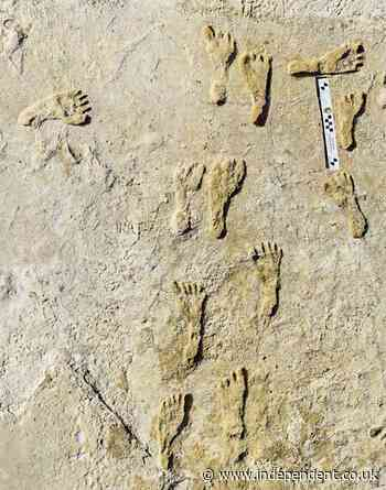 Oldest human footprints in North America found in New Mexico