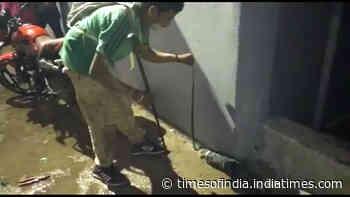 Odisha: Checkered Keelback snake rescued from bike's chain