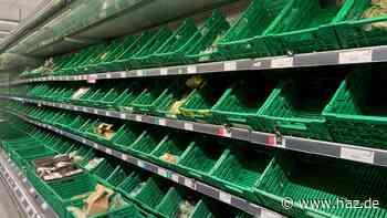 """Wahl zwischen Heizen und Essen? Briten fürchten """"Winter des Leidens"""""""