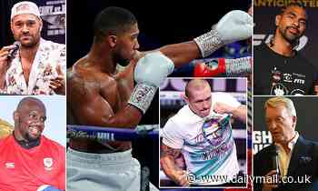 Anthony Joshua v Oleksandr Usyk fight predictions: Tyson Fury, Dillian Whyte and more have their say