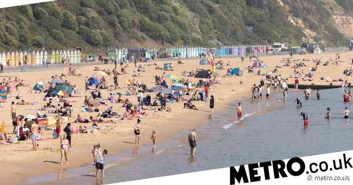 Teenager arrested after girl, 15, was 'pulled into the sea and raped' at beach