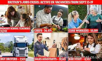 UK needs nearly TWO MILLION workers: Active job posts reveal bosses are crying out for staff