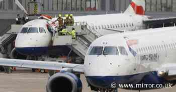 Blind Paralympian who glued himself to roof of British Airways plane jailed