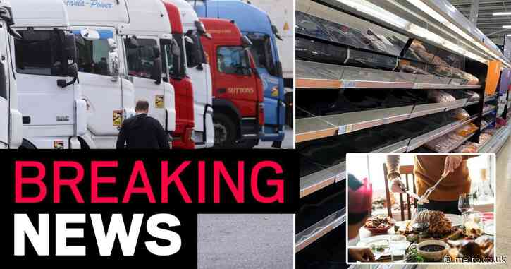 UK has '10 days to save Christmas' and solve shortage of lorry drivers