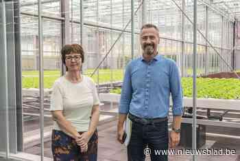 """Agrotopia, de grootste dakserre van Europa, zet deuren open voor publiek: """"Hier kunnen we experimenteren met onder meer stadslandbouw"""""""