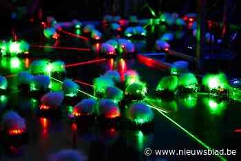 Zestig lasermuizen en zwaailichtwandeling in Warande