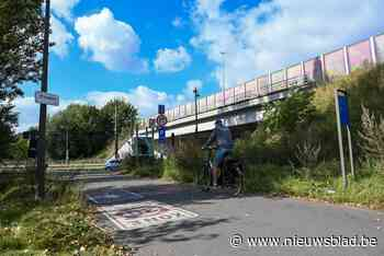 Nieuwe fietsbrug naast snelwegbrug E313