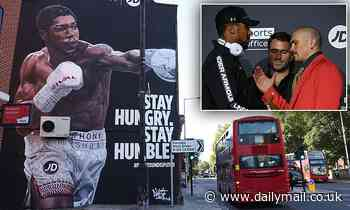 Anthony Joshua 'honoured' as stunning 40-foot mural is unveiled on Tottenham high street