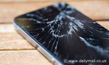 Woman 'KILLS her boyfriend by throwing her phone at him during an argument'