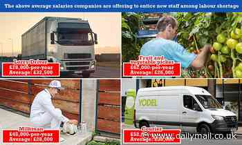 Britain's blue collar workers earning MEGA-BUCKS! How jobs crisis has seen some salaries DOUBLE
