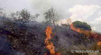 La Libertad: capacitan sobre riesgos que causan los incendios forestales - La República Perú